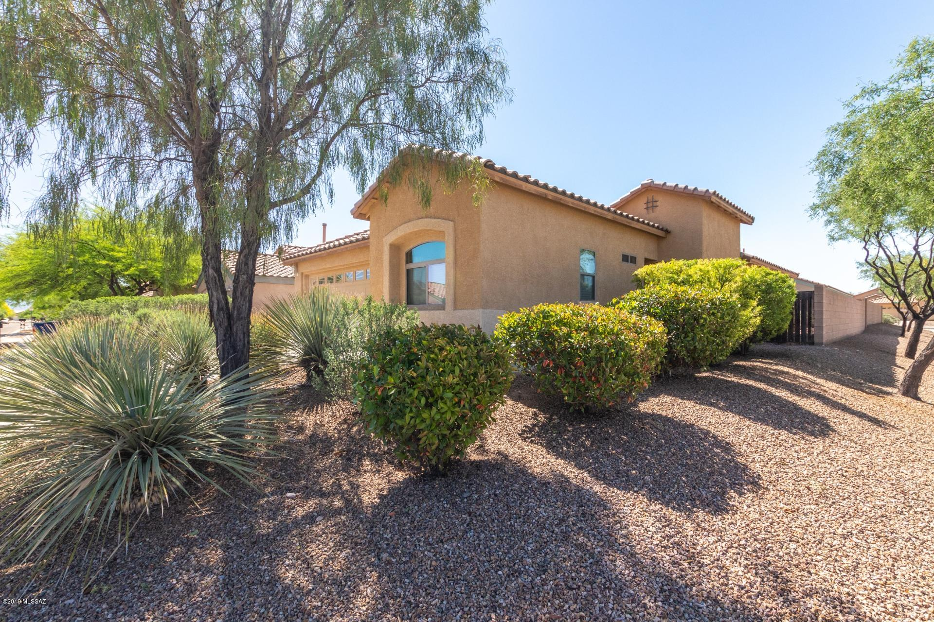 10496 E Feltleaf Willow Trail-0